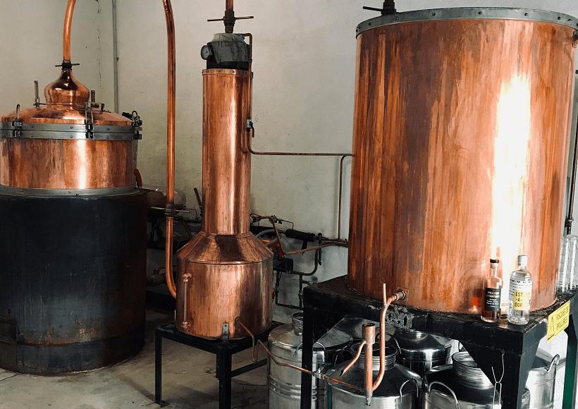 alambic distillerie BOWS à Montauban